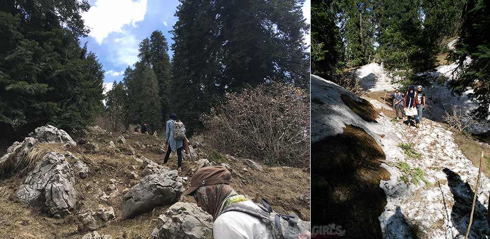 Hiking Mushkpuri Track