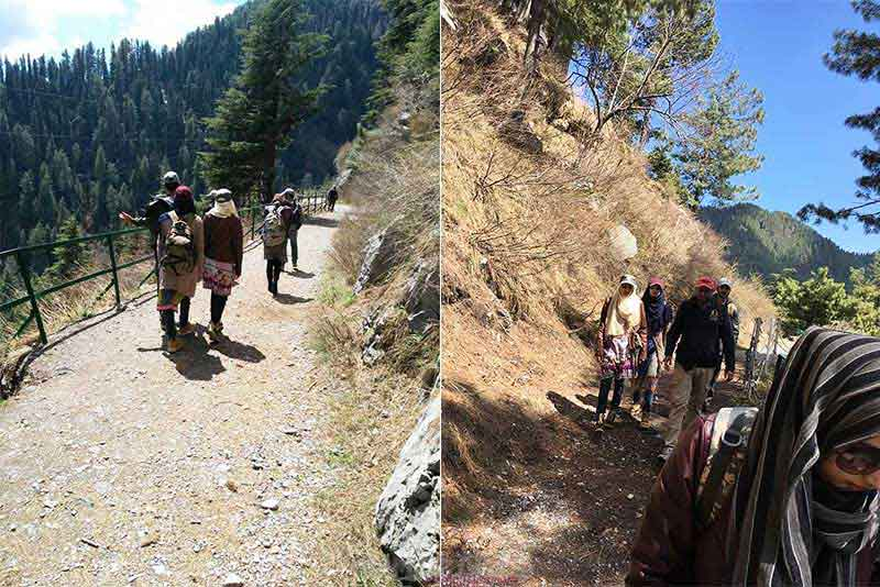 Tracking to Donga gali, Ayubia