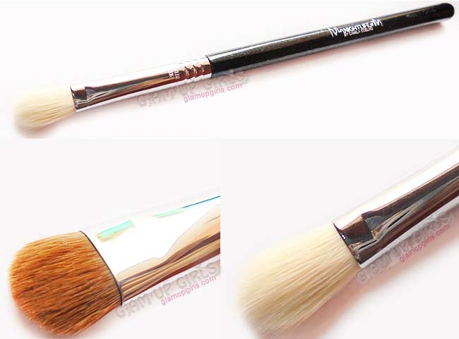 Sigma Beauty E25 Blending and E55 Shading brush